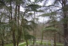 Résidence La Villa Baucis - photo 1