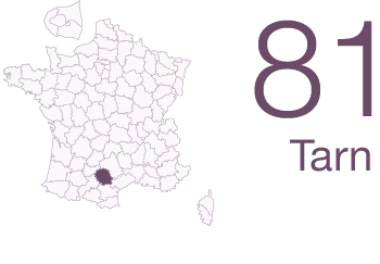 Tarn 81